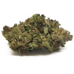 Indica Bubba Kush AA Strain - Grass In Box